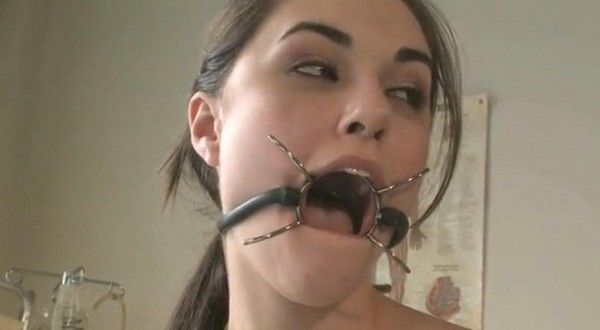 sasha-grey-pet-girl